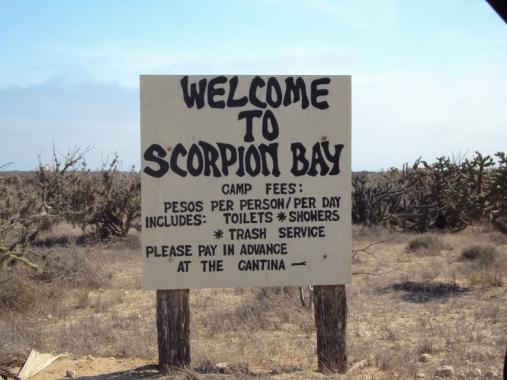 scorpion-bay-1